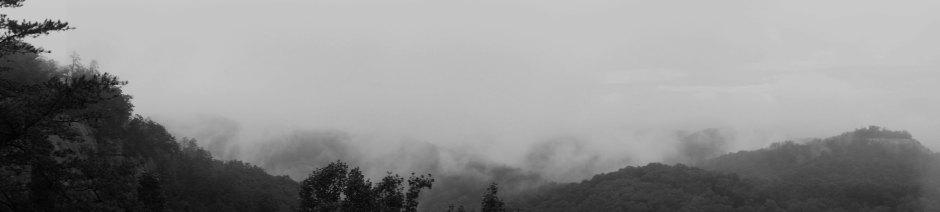 fogy_image